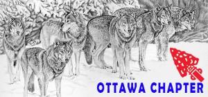 Ottawa picture