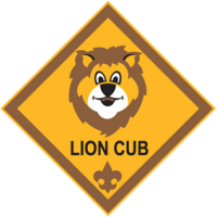 Cub Scout Resident Camp - Michigan Crossroads Council | Boy Scouts