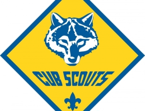 The Cub Scouter Newsletter